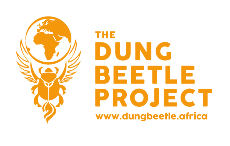 the dunge bettle project