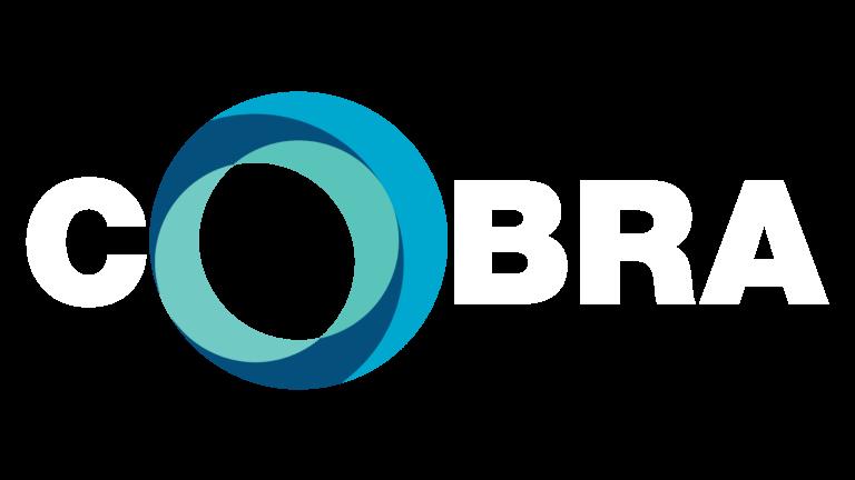 COBRA Business Rescue